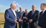 Лукашенко в Стародорожском районе. Фото пресс-службы президента