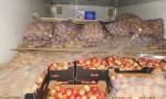 Россельхознадзор, яблоки, Беларусь, фитосанитарная служба Республики Беларусь
