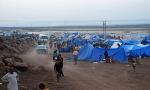 Беларусь, лагеря для беженцев, МВД Беларуси, комментарий, ЕС, МОМ, Лавров