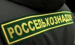 Россельхознадзор, Беларусь, реэкспорт