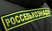 Россельхознадзор, белорусские сыры, декларации о соответствии