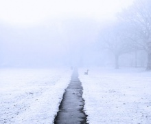 Туман в Беларуси