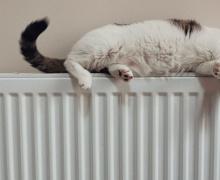 Минск, Беларусь, отопление, отключение, 12 мая, батареи, Мингорисполком, температура, средняя, прогноз, погода, потепление, отопительный, сезон