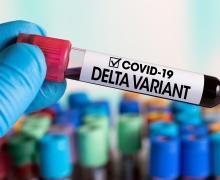 Новый штамм коронавируса появился в Беларуси