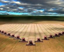 Уборка урожая в Беларуси