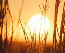 «Оранжевое» лето: в среду обещают ливень, но жара сохранится