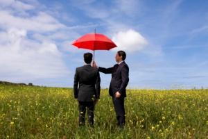 страховой рынок, Беларусь, программа развития, постановление Совмина № 922