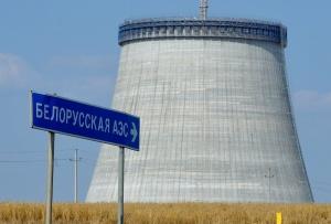 Беларусь, АЭС, делегация, Даля Грибаускайте, Майкл Пенс