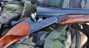 Стрельба в Бобровичах