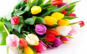 Что жители Беларуси подарят на 8 Марта, яндекс, 8 марта в Беларуси