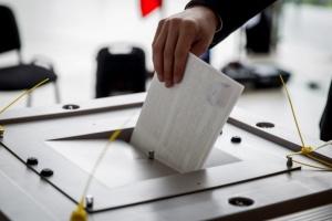 Местные выборы