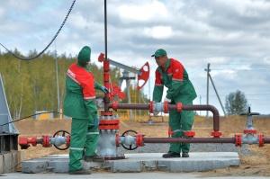 Три новых месторождения нефти открыли в Беларуси