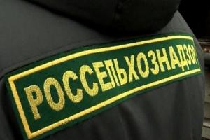 Россельхознадзор, 33 тонны говядины, Брянская, Смоленская область, граница, ввоз продукции, РФ