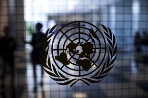 Верховный комиссар ООН по правам человека Руперт Колвилл, Беларусь, пытки, убийства, выборы, Роман Бондаренко, права человека