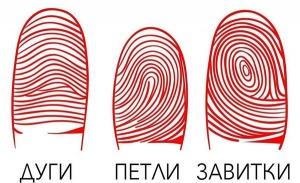 рисунок на подушечках пальцев