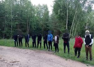 Литва, Беларусь, нелегалы, нелегальные, мигранты, задержаны, задержания, белорусская, граница, литовская, пограничники, группа, лица, люди, документы, деревня