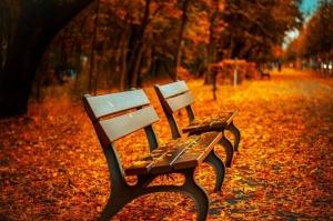 В Беларуси ожидается теплый октябрь
