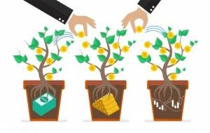 прямые иностранные инвестиции, инвестиции в белорусскую экономику, Белстат, ПИИ