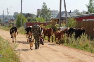 переселение безработных в деревни