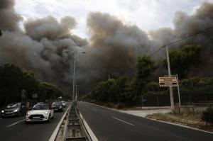 Лесные пожары в Греции унесли жизни 79 человек