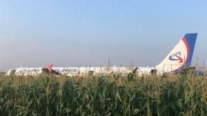 Аварийная посадка на кукурузное поле