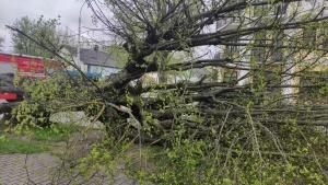 Погода, 3 мая, ветер, сильный, Беларусь, Минск, МЧС, нарушение, электроснабжение, машина, разбита, повреждены, крыши, пострадавшие, населенный, пункт, синоптики