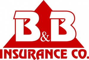 Би энд Би иншуренс Ко, Минфин, лицензия, Министерство финансов, B&B Insurance Co