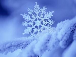 белгидрометцентр, погода, прогноз погоды, каким будет декабрь, декабрь, снег, гололед