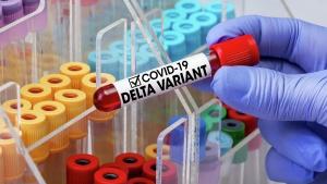 Индийский штамм коронавируса обнаружен в Гомельской области