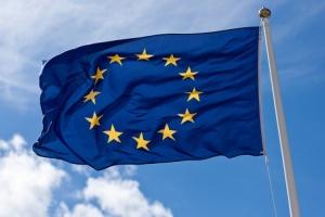 ЕС, Викторин, Национальый план по правам человека