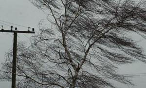 погода в Беларуси, оранжевый уровень опасности, МЧС, 6 апреля
