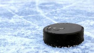 Лукашенко,спорт,хоккей,идеология,Кухней, совещание по хоккею, Беларусь, ЧМ, Шапиро, белорусский хоккей