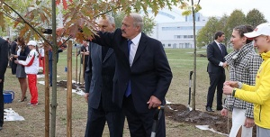 Лукашенко на посадке деревьев