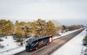 Новый автобусный маршрут между Минском и С-Петербургом: что за автобусы?