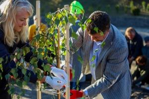 В SOS-Детской деревне Боровляны высадили 160 деревьев и кустарников