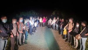 нелегалы, Беларусь-Литва, нелегальные мигранты, границы, нелегальная миграция