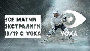 VOKA, хоккей, конкурс, Антон Бладик, velcom, наш хоккей